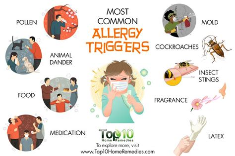 common allergies 10 most common allergy triggers top 10 home remedies