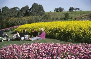 Botanic Garden Mount Annan Greater Blue Mountains Drive Routes Maps Attractions