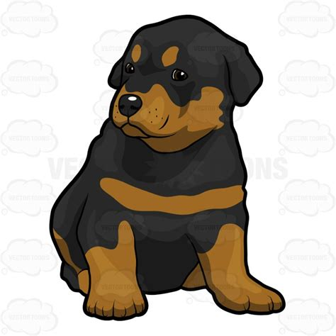 rottweiler clipart angry rottweiler clip cliparts