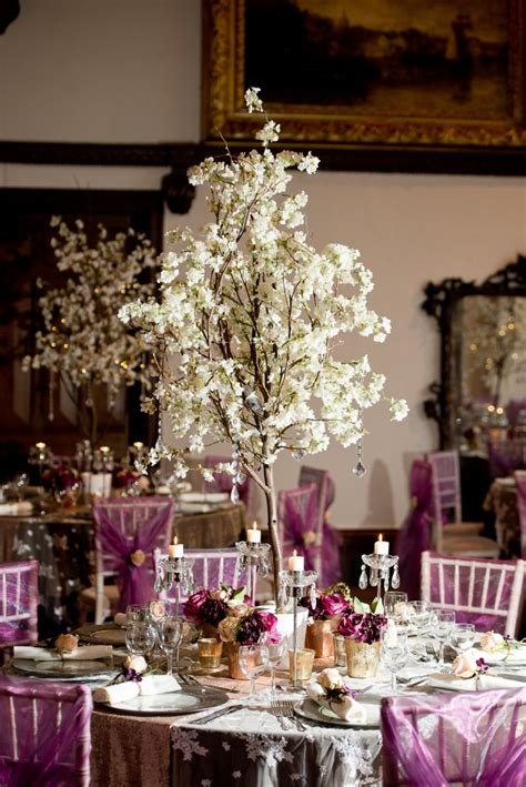 blossom trees and wisteria trees for hire chillie breeze
