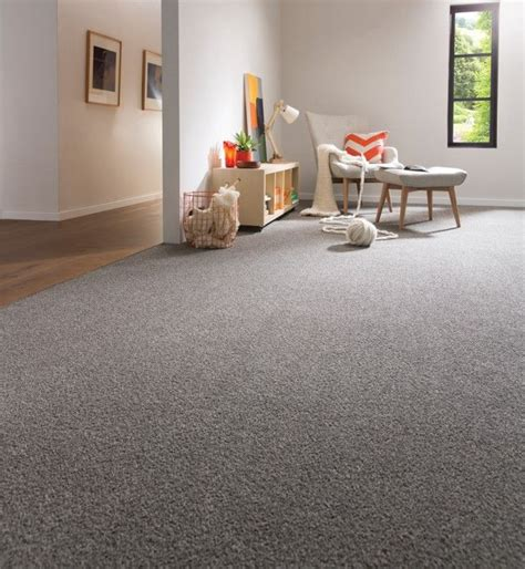 Carpet Colours For Living Rooms by Best 25 Grey Carpet Ideas On Carpet Colors