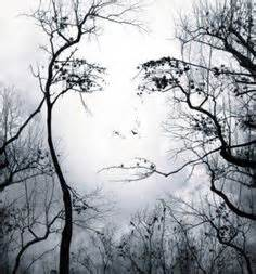 Face Or Vase Optical Illusion 1000 Images About Faces In Nature On Pinterest Smiling