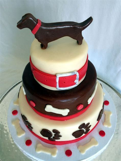 birthday cake for dogs 25 best dachshund cake ideas on puppy cake wiener dogs and dachshund