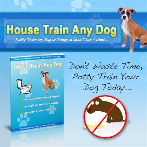 dog house training products house train any dog clickbank