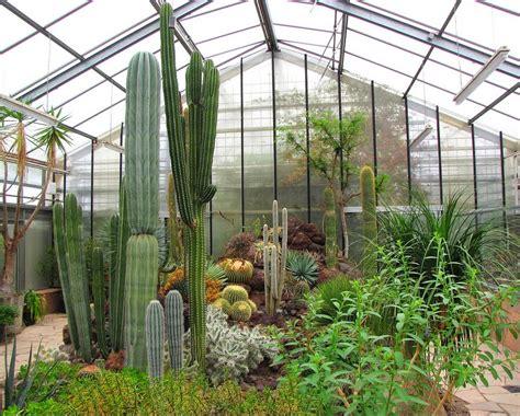 garten chemnitz panoramio photo of botanischer garten chemnitz 11