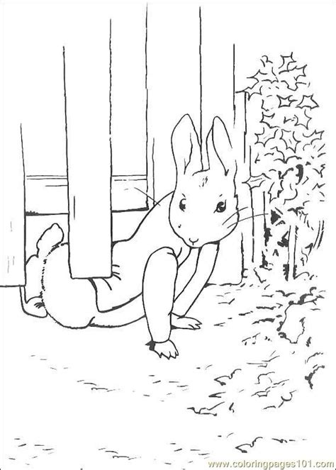 peter rabbit coloring pages nick jr peter rabbit free coloring pages