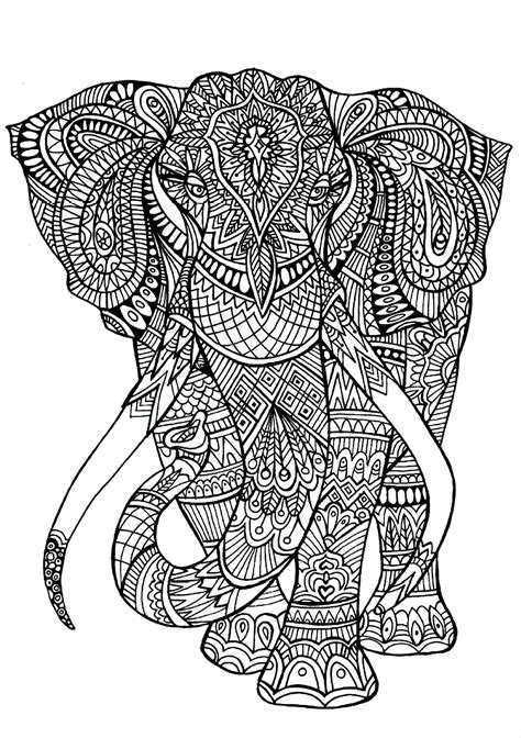 elephant patterns animals coloring pages  adults