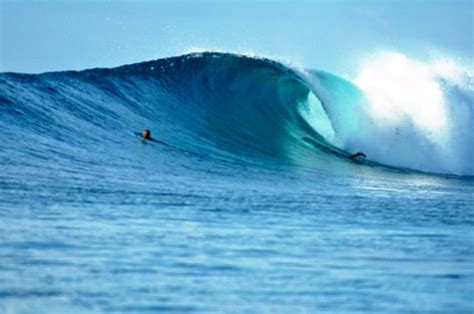 waves boat club prices surfing maldives boat club