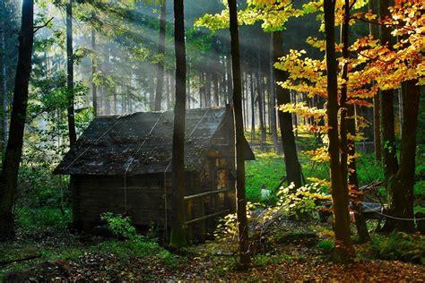 casa nel bosco his soul la casa nel bosco page 1 wattpad