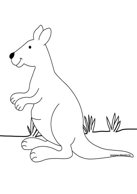 animal coloring pages kangaroo coloring kangaroo