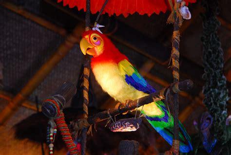 the tiki room walt disney s enchanted tiki room celebrates 50 years 187 small world vacations
