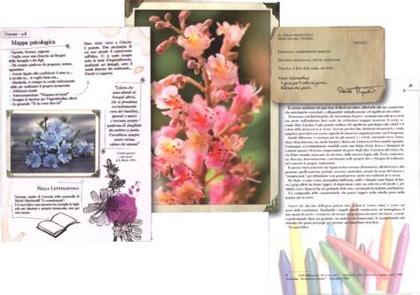 come si preparano i fiori di bach i fiori di bach cure e rimedi roberto pagnanelli
