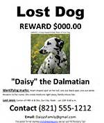 free lost dog cat missing pet poster ms word template