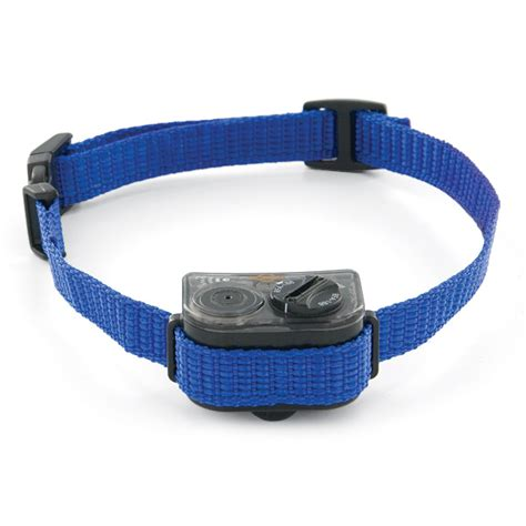 bark collars for dogs elite spray bark collar by petsafe pbc00 11283
