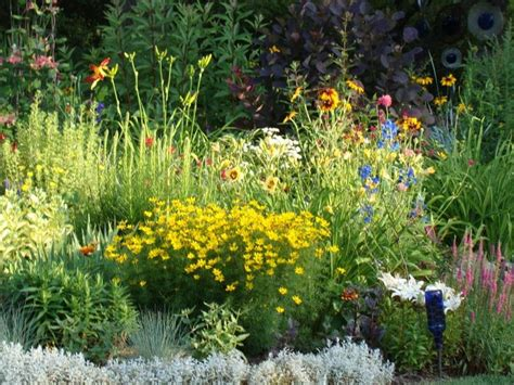 Cottage Garden Flowers Perennials by 1000 Images About Zone 4 Gardening On