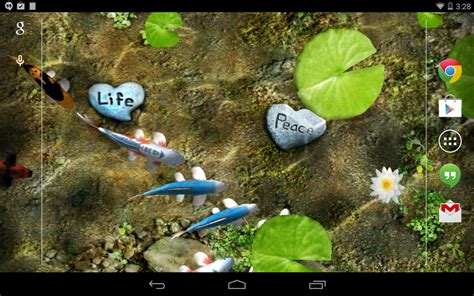 koi live wallpaper pro apk koi free live wallpaper apk gallery