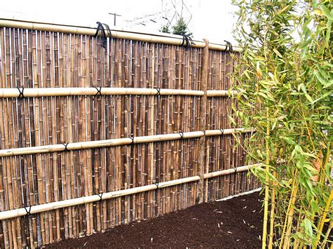 diy backyard fence bamboo garden fence diy jbeedesigns outdoor bamboo