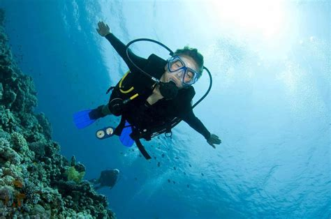 dive in scuba diving snorkeling free magazine for