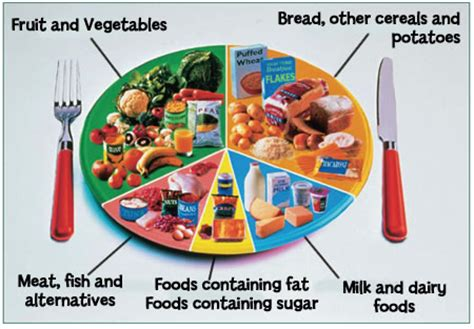 7 food groups carbohydrates community fit club 4