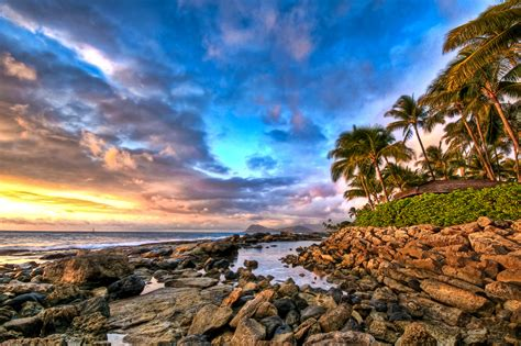 today  history hawaii   state aol news