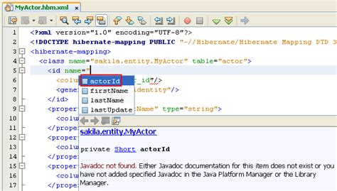 java swing application source code creating the java plain old java objects and mapping files