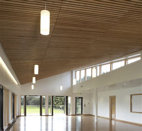 Douglas Ceilings by Douglas Supplied The Ceiling In The Cricket