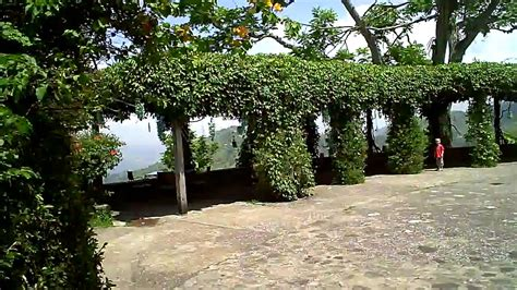 Strawberry Hill   Blue Mountain   Kingston Jamaica HD   YouTube