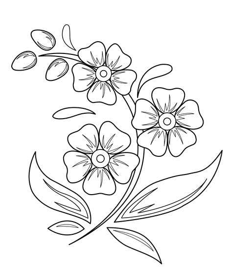 a flower s view coloring book for everyone books pictures drawing pictures of flowers for drawing
