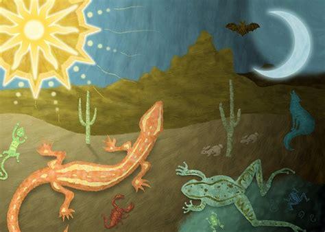 cadenas alimenticias del desierto 191 c 243 mo es la cadena alimenticia del desierto lifeder