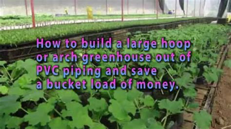 how do i build a greenhouse in my backyard homemade greenhouse detailed step by step greenhouse