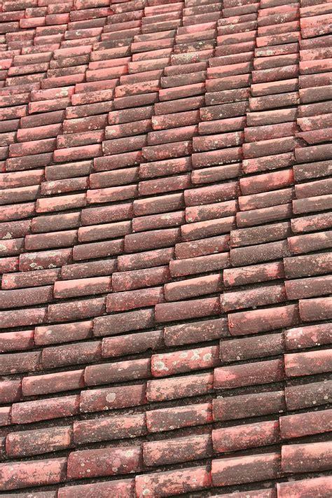 Terracotta Roof Tiles Terracotta Roof Tiles Photograph By Robert Hamm
