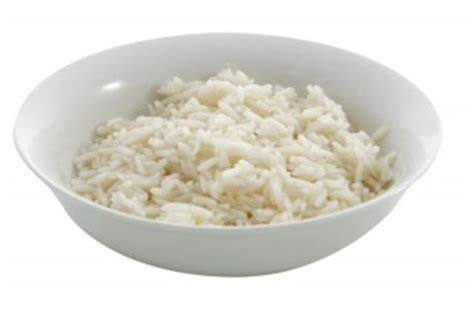 can puppies eat rice can i give my rice when rice is right for pet dogs