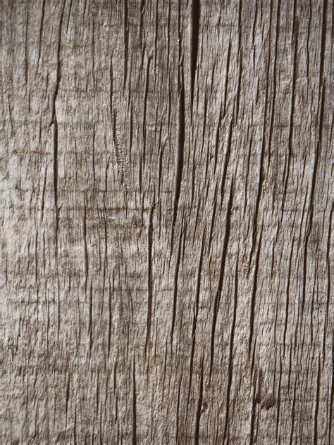 images table tree branch coffee texture plank