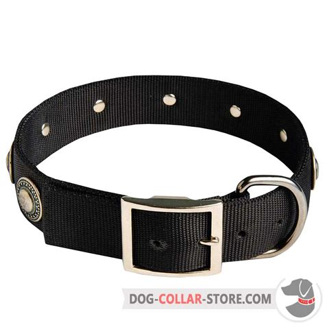 wide collars wide collars library