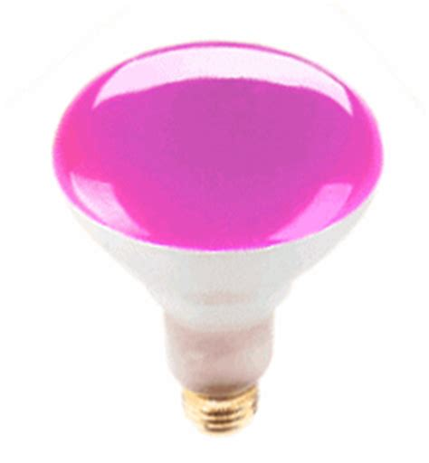 special effects light bulbs br30 pink flood light bulbs shop great prices and selection