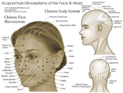 pressure points hair growth stimulate hair growth with acupuncture therapy how to