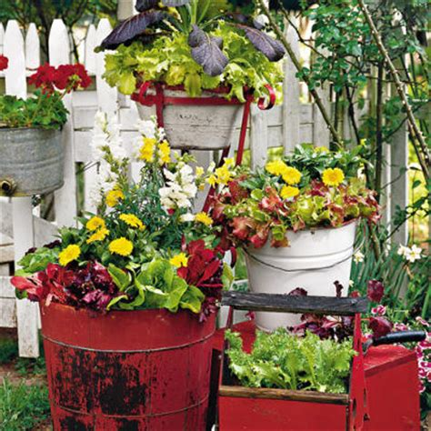 Unique Container Gardening Ideas Use Unique Containers Like Vintage Wooden Boxes And