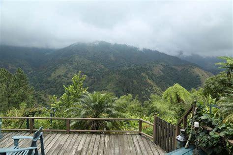 Blue Mountain Jamaican blue mountains of jamaica handpicked villas