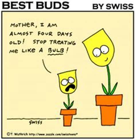 Gardening Jokes by Tulip Bulb Garden Humor Best Buds Gardening