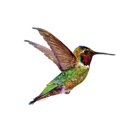 art to license buy amy kirkpatrick hummingbirds