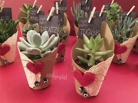 Bonsai Wedding Giveaways - 17 best images about succulent love on pinterest disney succulent party favors and