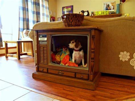 fabulous dog bed design ideas  pets  enjoy