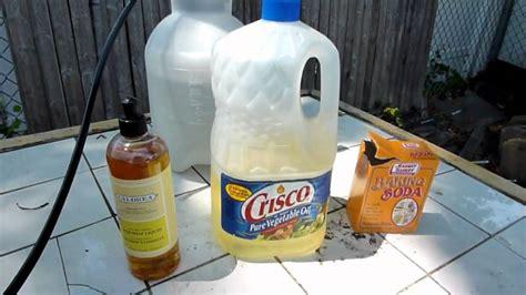 how to diy organic insecticide fungicide recipe doovi