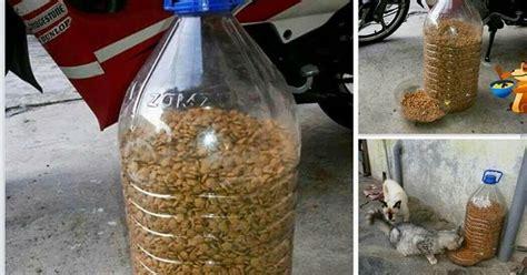 cara membuat oralit sendiri untuk kucing noor aziemah cara nak buat sendiri bekas makanan untuk