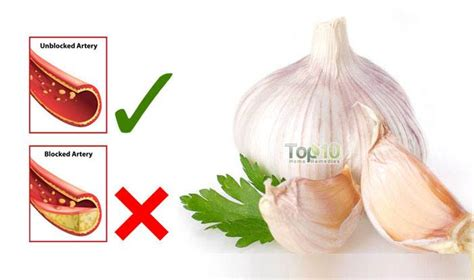 home remedy to unclog home remedies for clogged arteries top 10 home remedies