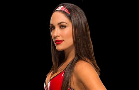 brie bella s tattoo the meaning brie s pwpix net