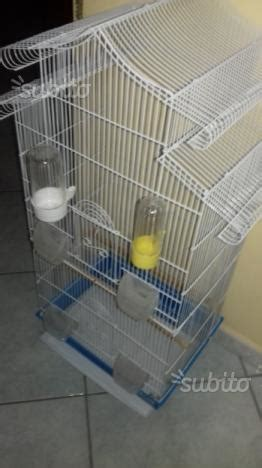 gabbia per pappagalli usata gabbia powder coated per pappagalli posot class