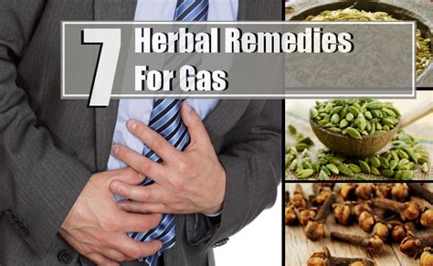 herbal remedies for gas treatments cure for gas find
