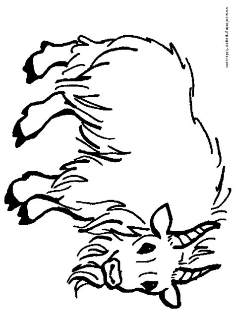 farm goat coloring page horns colouring pages