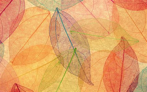 pattern artists nature vm23 rainbow color leaf art fall nature pattern